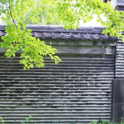 湯島聖堂 土塀