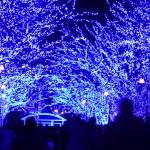 渋谷 ~青の洞窟~