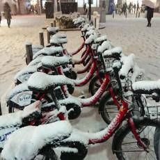 2018.1.22 大雪でした。