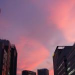 美しい夕焼けでした。