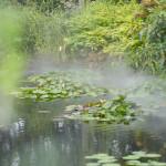 秘密の花園 ~西武池袋屋上庭園
