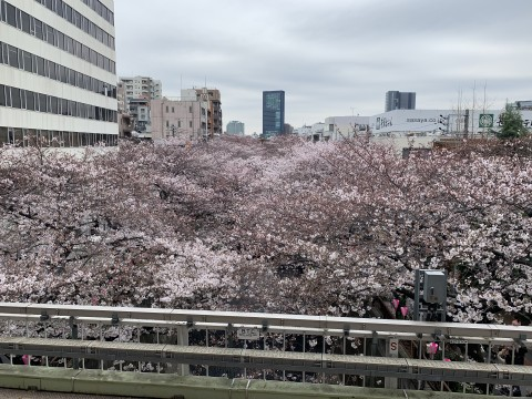 中目黒駅1