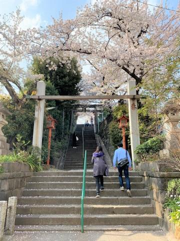 m筑土八幡神社(つくどはちまんじんじゃ (1)