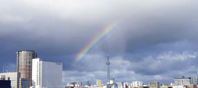 虹を見ました~ヽ(´▽`)/