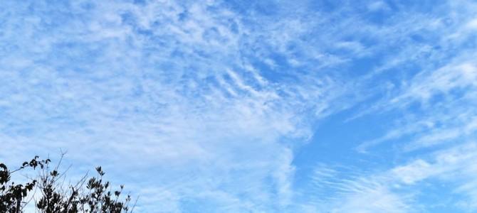 新宿で見上げた秋の空♪