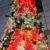 わぉ!もうクリスマスツリー?